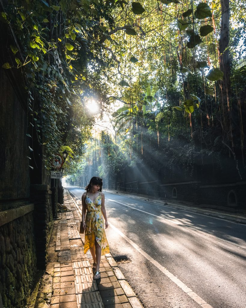 places to wander around Ubud